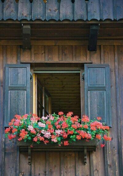 Oltre 25 fantastiche idee su fioriere per davanzale su - Fioriere per davanzale finestra ...