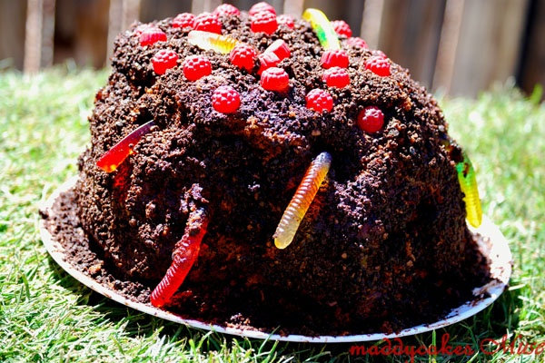 "Maxs Worm Cake- super easy! 2 boxes choc. Cake mix, 4 tiers w/ choc pudding between layers, (leave it a lil thick), cover w/choc frosting and sprinkle w/""dirt"" (crumbles choc wafer cookies), gummy worms and red dots to top!"