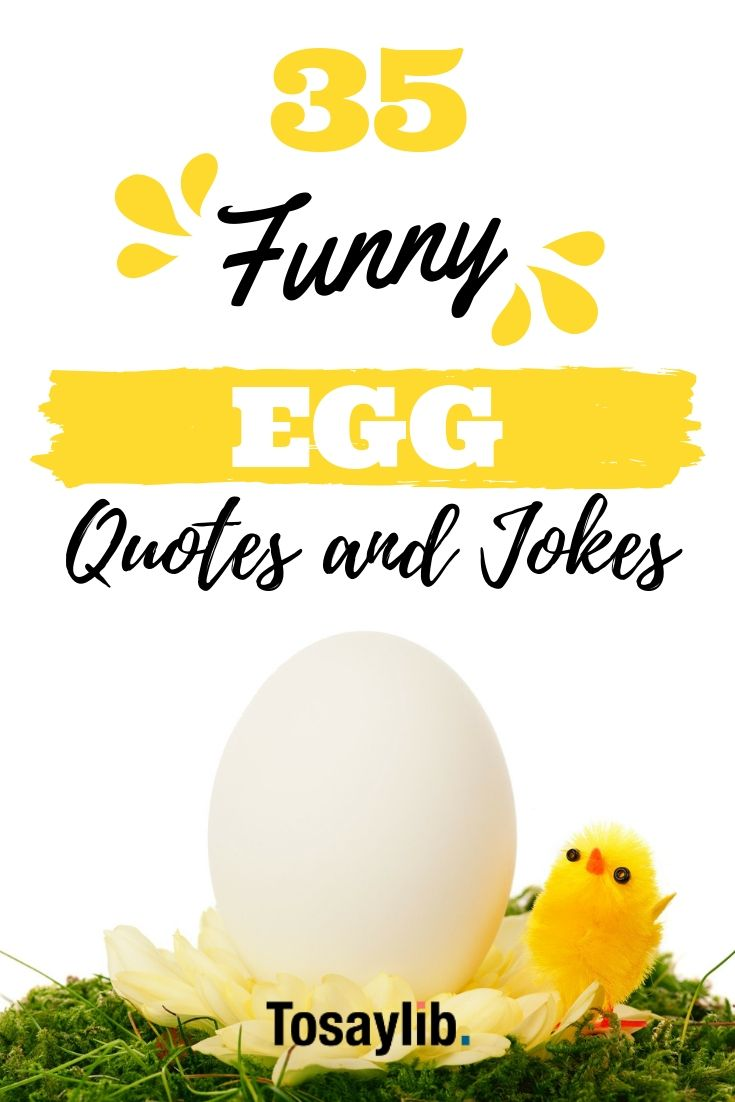 35 Funny Egg Quotes And Jokes Funny Eggs Quotes Jokes Quotes