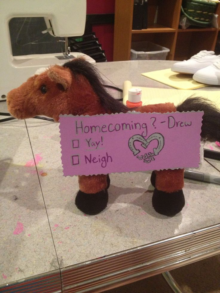 My idea for Drew to ask Julia (the equestrian) to homecoming! Homecoming? Yay or Neigh cute