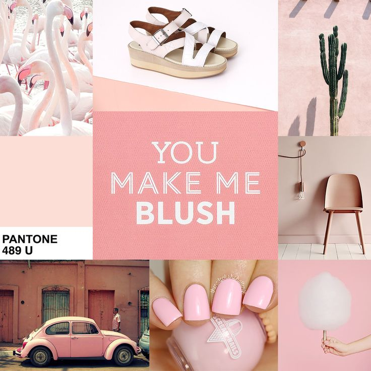 Colour Inspiration: Blush   Lo & Behold   Online Fashion
