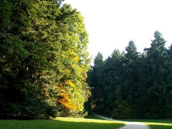 Arboretum van Tervuren: langs de Koninklijke Wandeling