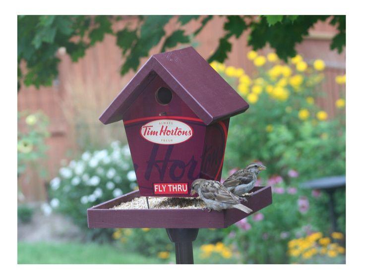 Tim Hortons Fly Thru Bird Feeder by buyabirdhouse on Etsy