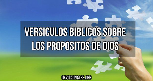 Versículos Bíblicos Sobre El Propósito de Dios †