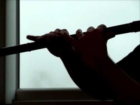 opera bastille flute