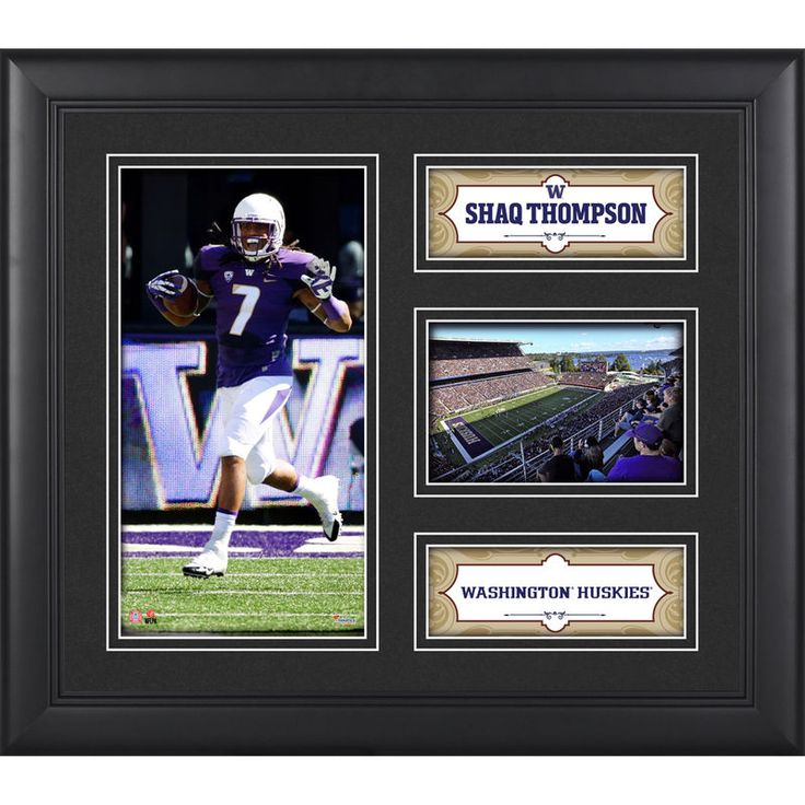 Shaq Thompson Washington Huskies Fanatics Authentic Framed 15'' x 17'' Collage