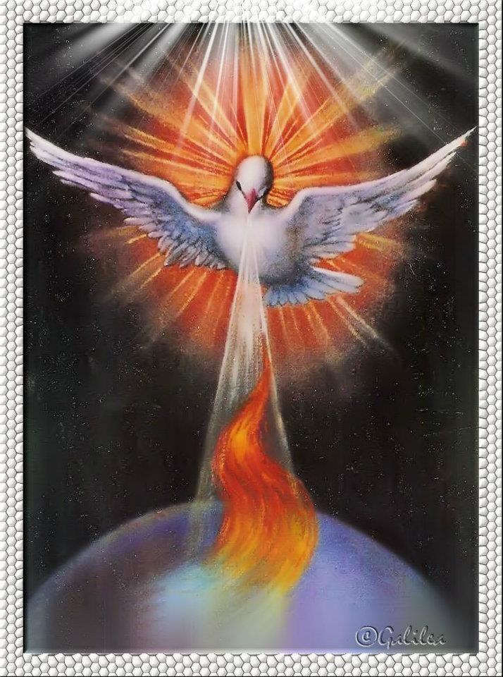 Santa María, Madre de Dios y Madre nuestra: Imágenes Espíritu Santo