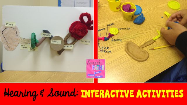 Speech Paths: Ears & Hearing-Interactive Activities. Pinned by SOS Inc. Resources. Follow all our boards at pinterest.com/sostherapy/ for therapy resources.