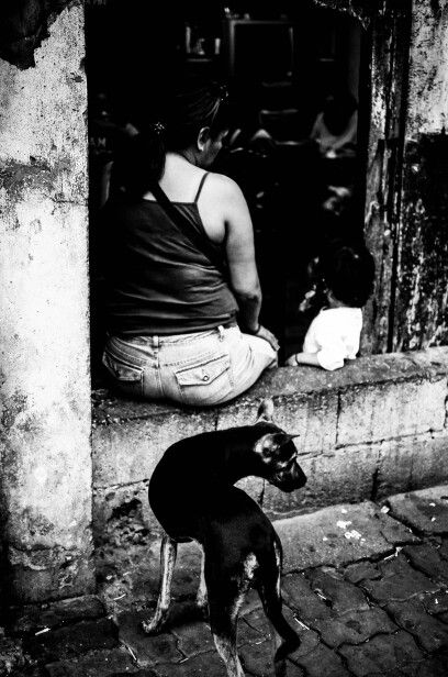 street photography family is not complete without our loving pet