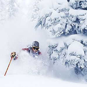 The Most Underrated Ski Resorts in North America: Fernie puts up more consistent snow than Whistler, and warmer temps (an average of 25 F), than nearby Banff, which means more of the light, fluffy powder known as champagne, and more often. Sure, the resort is smaller, but only relative to giants like Whistler. Fernie has more expert terrain than most other resorts have in total, including five back bowls that are usually buried — with up to 37 feet of snow per season