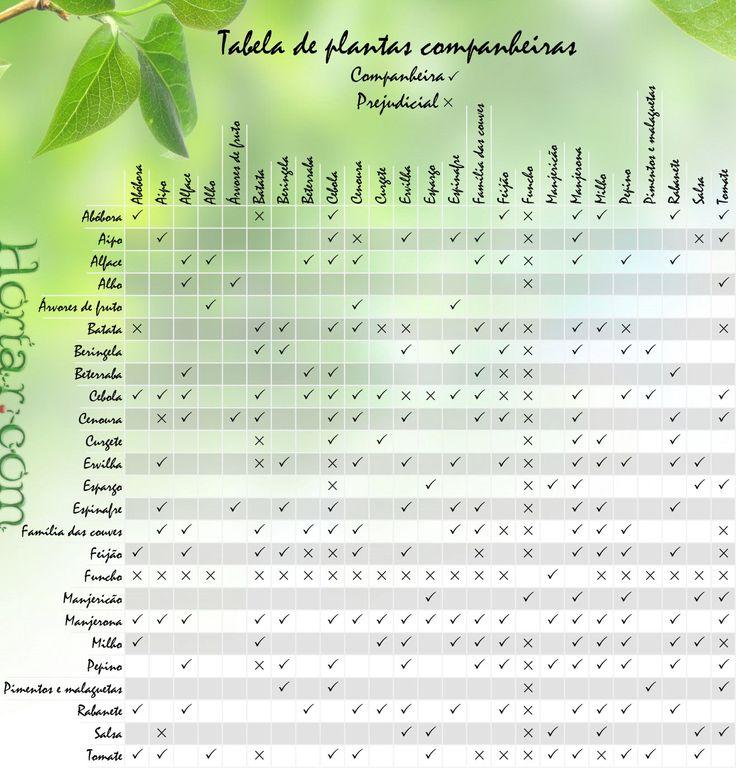 Tabela de plantas companheiras