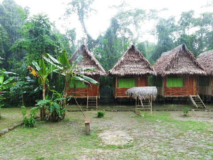 Our amazing little house, Wimba Lodge in Iquitos l Peruvian Rainforest l @tbproject