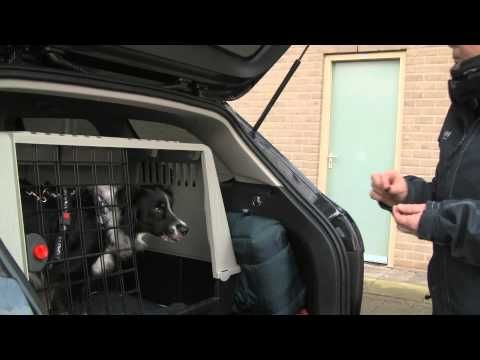 ▶ Impulscontrole in de dagelijkse praktijk: De parkeerplaats oefening - YouTube