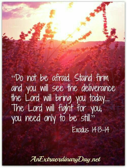 Do not be afraid stand firm and you will see the deliverance the Lord will bring you today... the Lord will fight for you you need only to be still