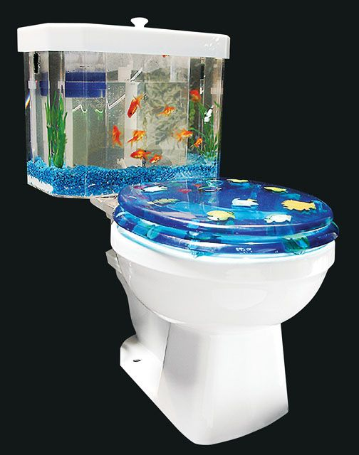 25 best ideas about boy bathroom smell on pinterest for Fish tank smells