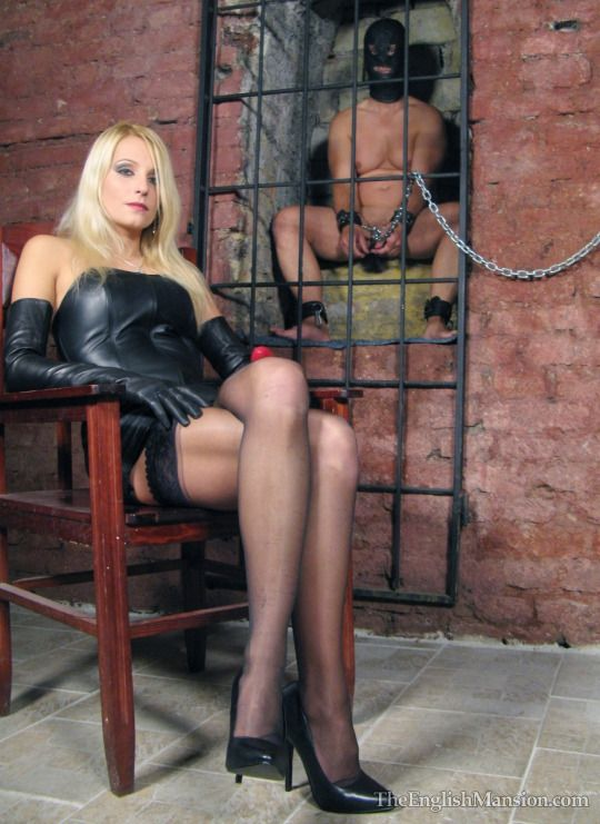 Has been femdom latex mistress dog slave her boys!&nbsp