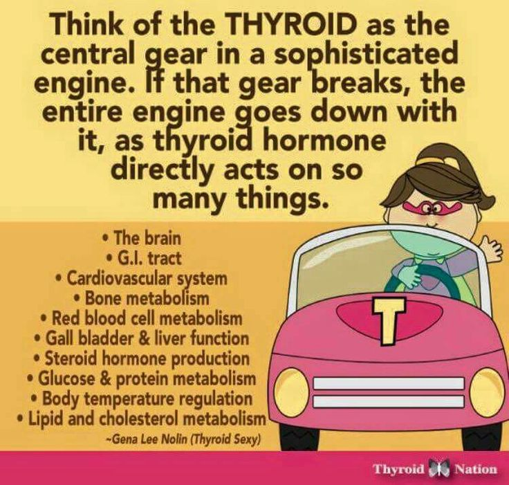 How the thyroid affects the GI tract, as well as much more.