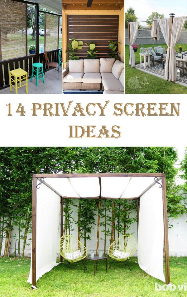 14 Privacy Screen Ideas