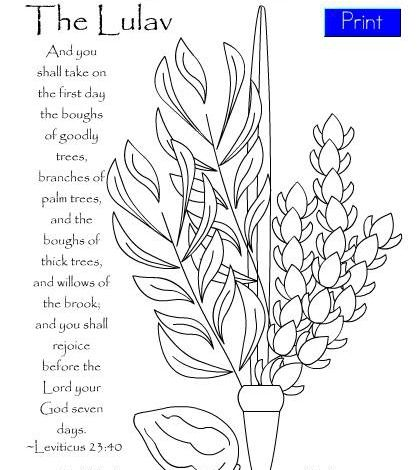 Lulav Four Species Coloring Page
