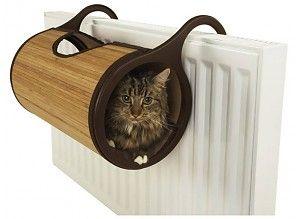 Cieplaki-kociaki lubią to :)