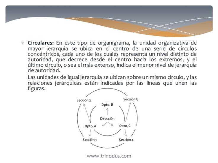 * Por Su Presentacion o disposicion grafica:  E). circulares.