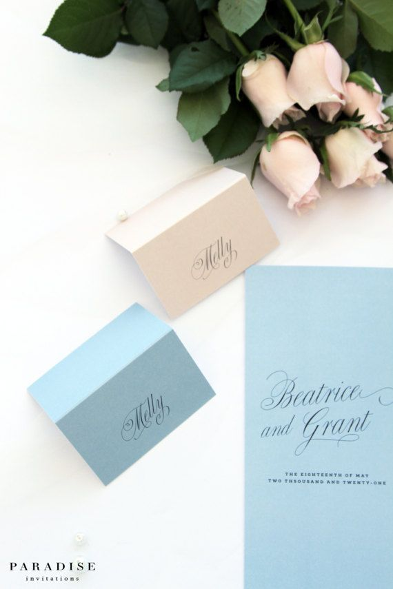 Dusty Blue and Champagne Place Cards and Table Numbers, Name Cards, Printable Files or Printed Cards