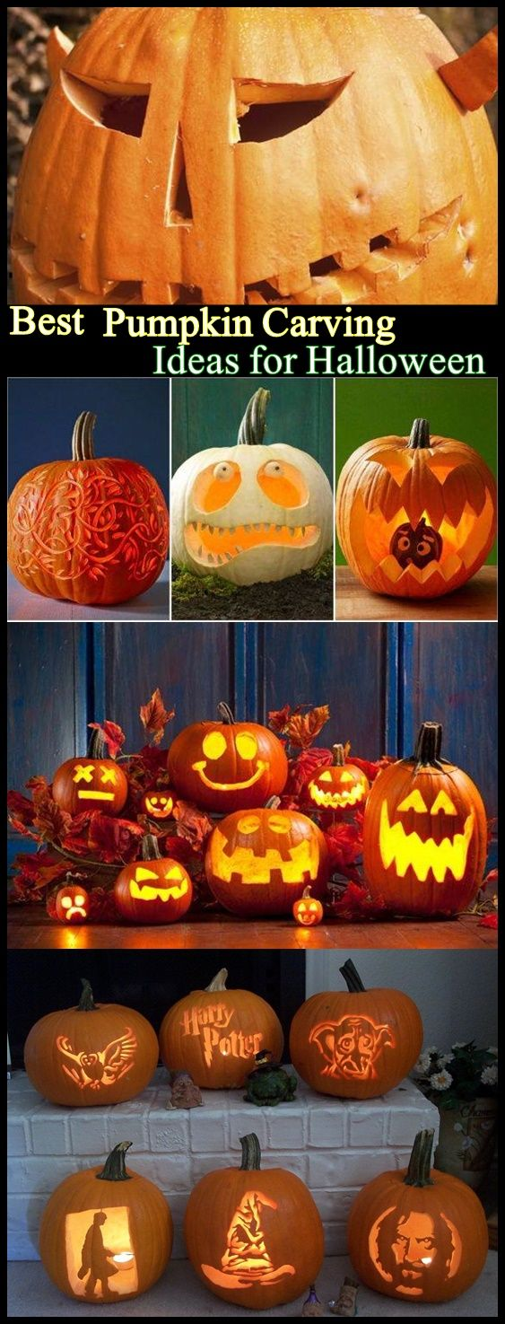 Best 20+ Best pumpkin carvings ideas on Pinterest | Pumpkin ...