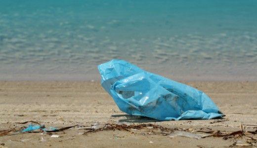 Plastica biodegradabile: cosa significa? È veramente meglio di quella tradizionale per l'ambiente?