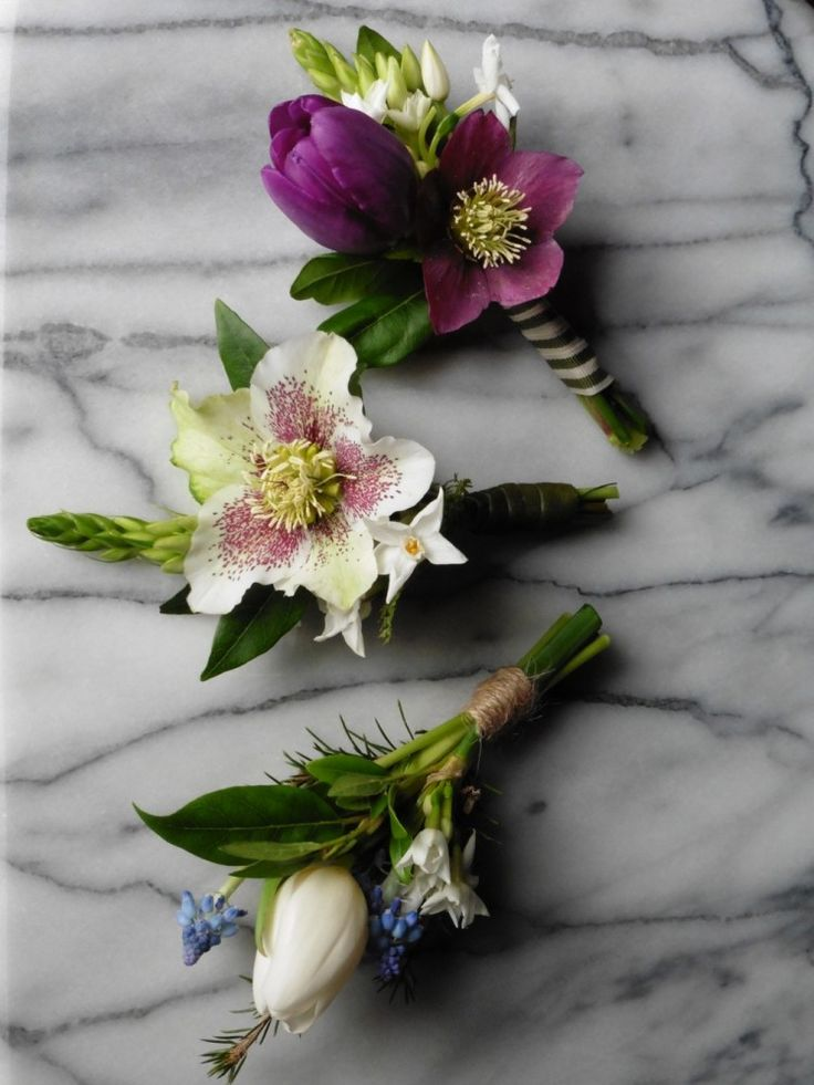 Hellebore Buttonholes - The Yorkshire Dales Flower Company