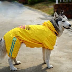 Puppy Love Jumpsuit Styled Superhero Raincoats for Large Breed Dogs - Buy Online Pet Food, Treats, Toys, Clothes, Socks, Shoes, Raincoat | Online Pet Shop | Online Pet Store India | petsGOnuts.com