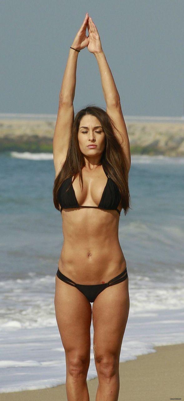 Bella Twins Abs Workout Routine : Nikki Bella and Brie Bella Fitness Routine