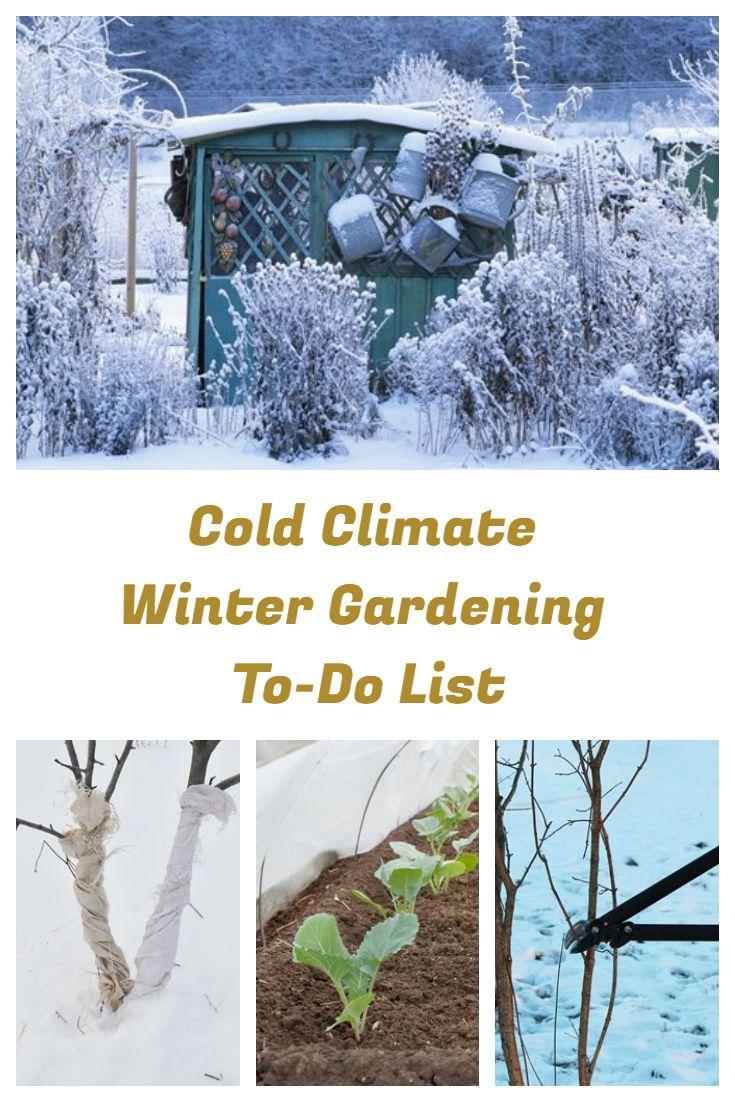 fe1749c5cf9905c43689718a5e38f30d - What Can Gardeners Do In Winter