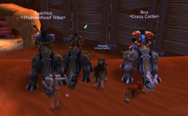 Crazy Cattle guild members mount up, we finally got our mounts! And Baachus has joined our guild, ignore that silly Thunderhoof above his head.     Mount guide for World Of Warcraft! For FREE! Check out http://gameguidesno1.com/wow
