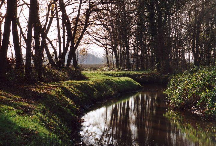 Bij Groningen denk je in eerste instantie aan onafzienbare akkers en een verre horizon, aan wind en wad, klei en dijken. Maar Westerwolde, in de 'staart' van Groningen, heeft een heel ander gezicht. Strakke lijnen maken plaats voor kronkelwegen, verre einders voor een intiem, besloten landschap. Met vennetjes, kronkelende beekjes, stukjes hei, bossen en akkers, waar zowaar een voorzichtige glooiing inzit.