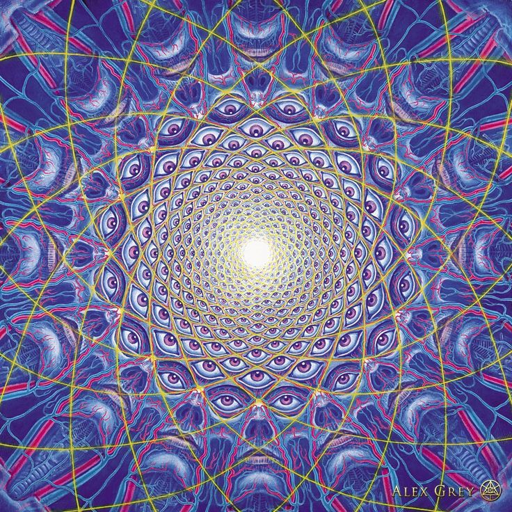 Alex Grey Psychedelic Painting Art Gallery Collective Consciousness Psychedelic Spirit Paintings