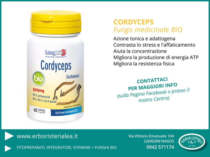 Cordyceps fungo medicinale tonico adattogeno ci aiuta a contrastare la fatica e i periodi di stress www.erboristerialea.it #erboristeria #funghimedicinali #tonico #antistress
