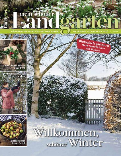mein schoenes Land bloggt Mein schoener Landgarten