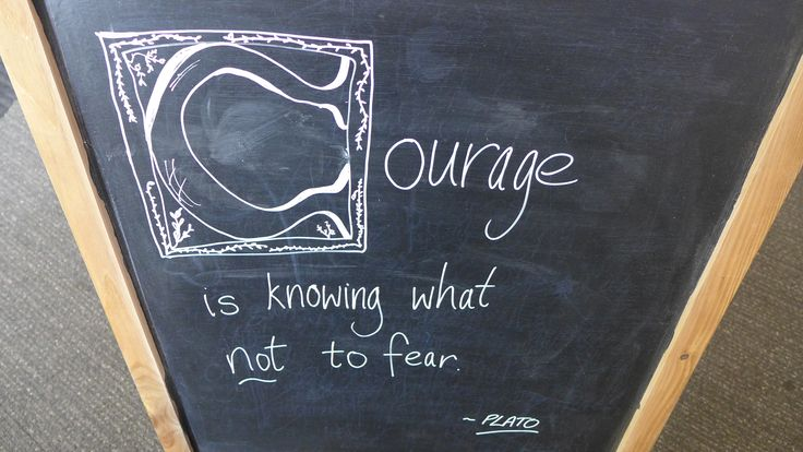 """""""Courage is knowing what not to fear"""" ~ Plato"""