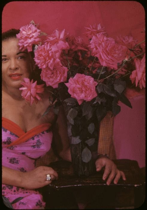 Billie Holiday: Billy Holidays, Billie Holiday, Carl Vans, Posts, Memories Lane, Vans Fight, Billy Holliday, Flowers, New Years