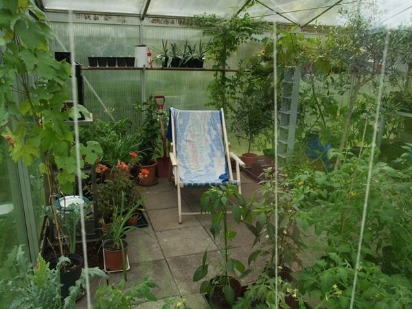 2017-06-05: The greenhouse