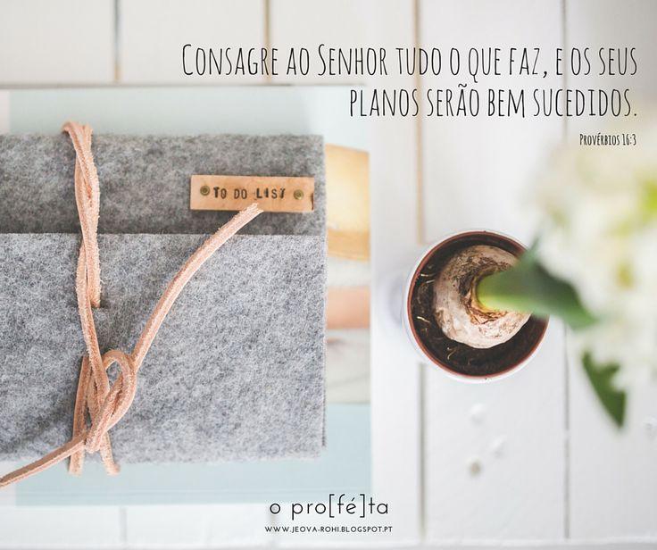 #Provérbios