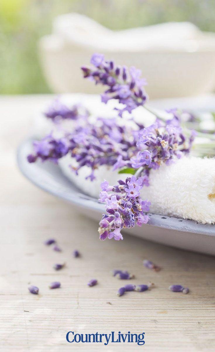 30 Of The Best Ways To Use Lavender Lavender Recipes Edible Lavender Lavender Crafts