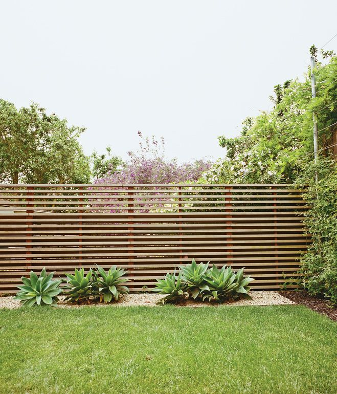 The once-sloping space now has climbing vines, a slatted fence, and foxtail agaves.   Photo by Ike Edeani. *from Dwell