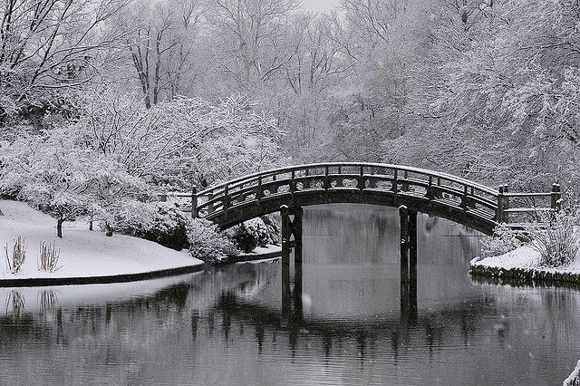 Snow-covered Japanese Garden in Missouri Botanical Garden