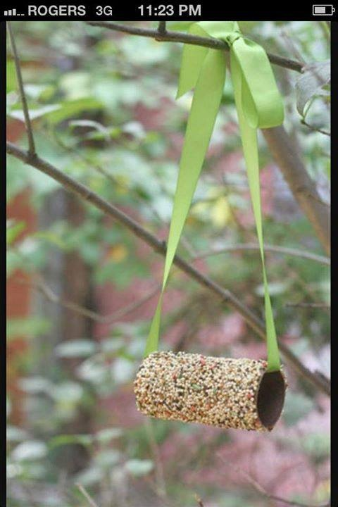 Great easy craft to do with the kids! Roll empty toilet paper roll in peanut butter, roll in seed, use ribbon to hang.