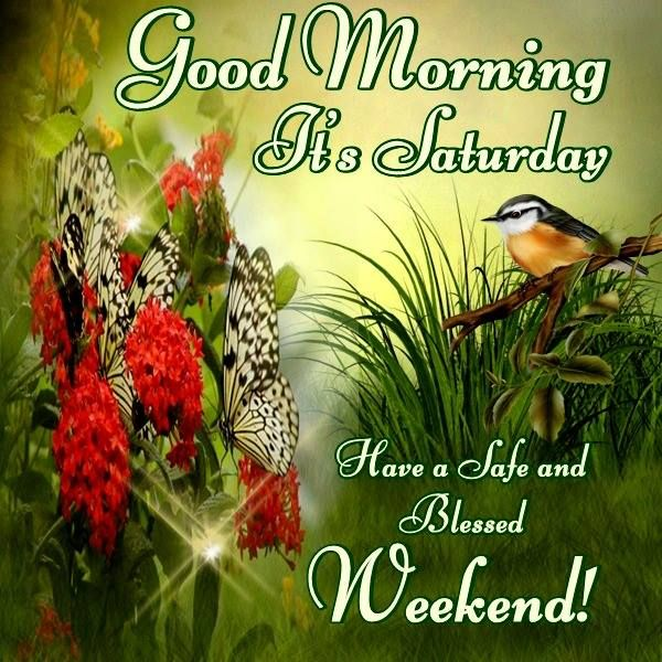 Good Morning, It's Saturday. Have a Safe and Blessed Weekend!