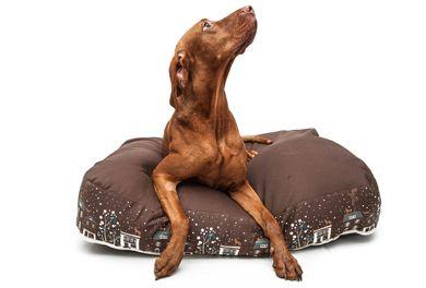"""PetBag, """"M"""" szögletes alakú kutyafekhely / dog bed / vizsla"""