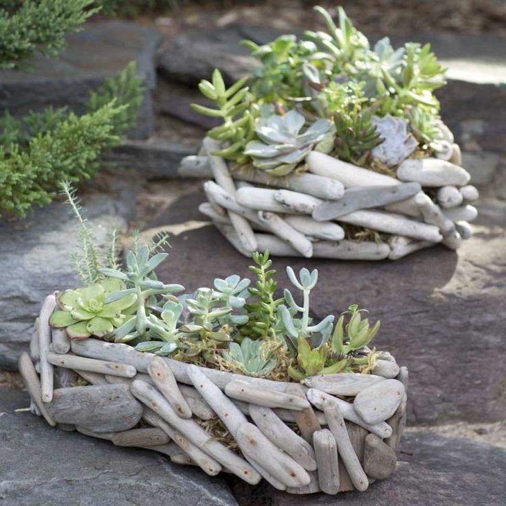 bacs à fleurs pour les plantes succulentes en bois flotté