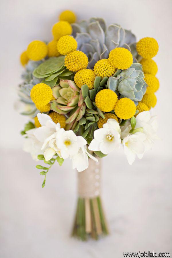 craspedia & succulents - yellow/gray/white