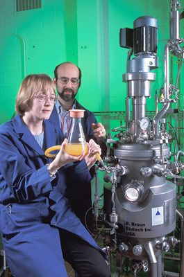 Microbiologist Nancy Nichols and biochemical engineer Bruce Dien add yeast to a bioreactor to begin ethanol fermentation. Bt and non-Bt corn hybrids were compared for ethanol yields.  Photo by Scott Bauer.